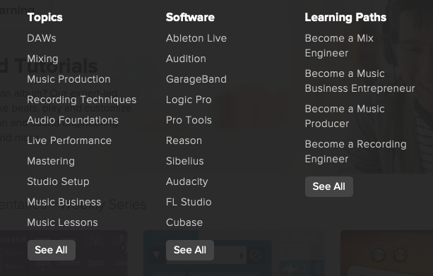 Screenshot of Audio + Music menu on Lynda.com.