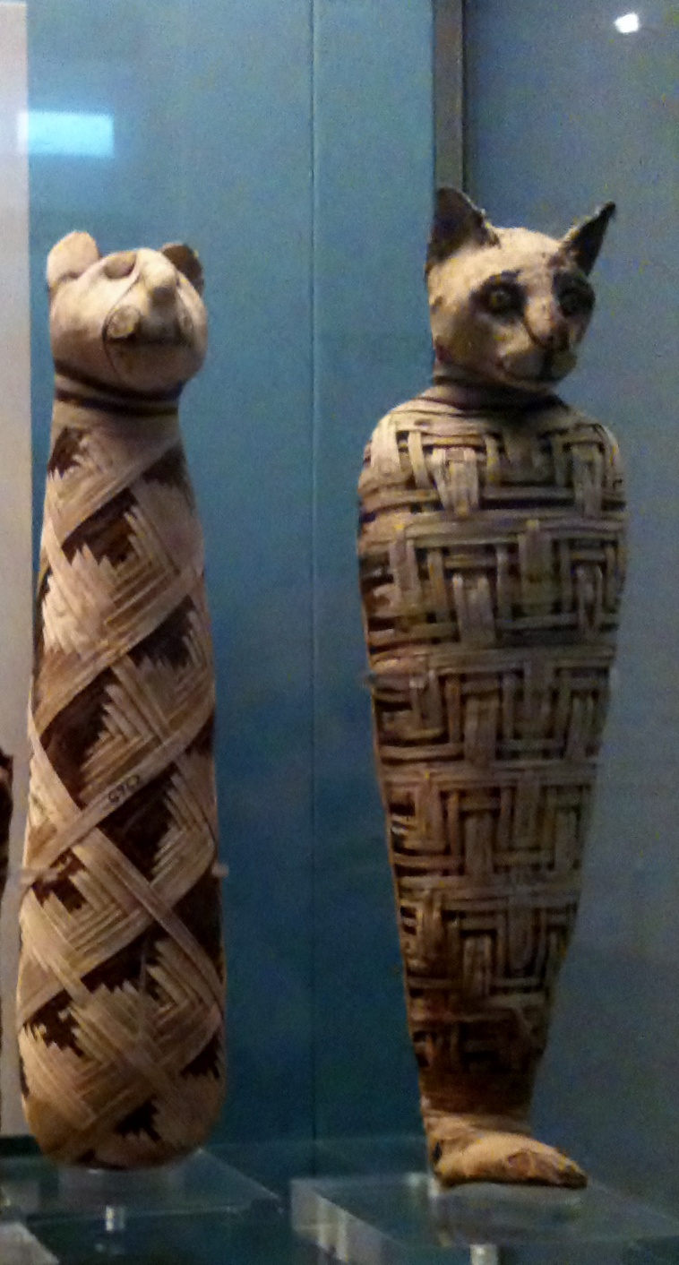 Mummified cat from Egypt Carnegie Museum display in 2013.
