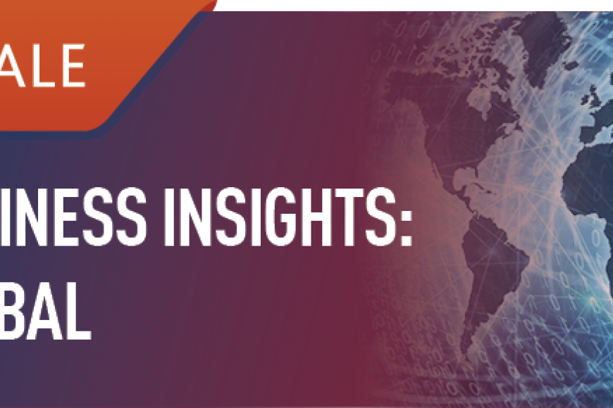 Buisness Insights: Global logo