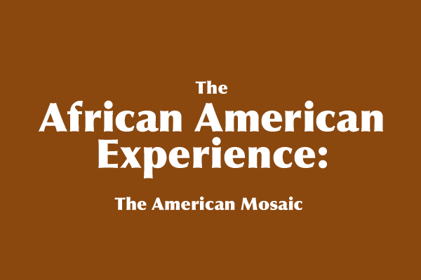 The African American Experience: The American Mosaic