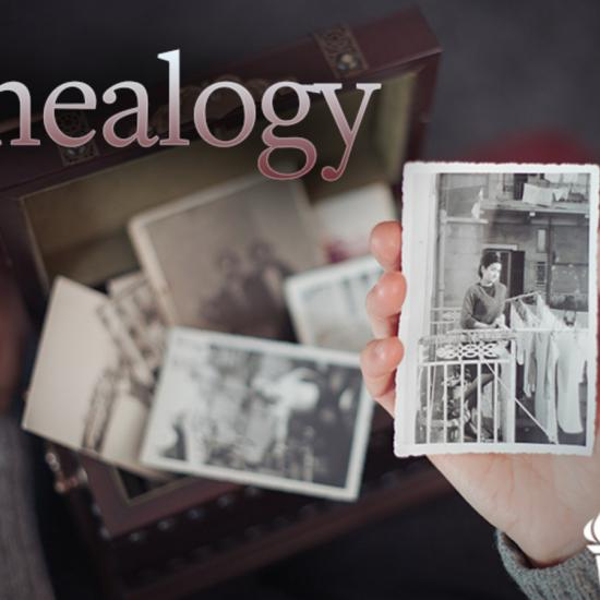 The Great Courses genealogy series