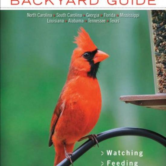 Southern Birds Book Jacket