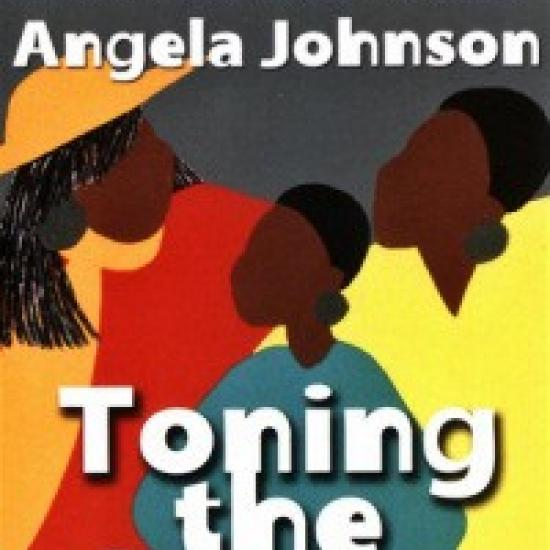 Multi-colored Toning the Sweep by Angela Johnson book cover; three Black women in colorful clothing