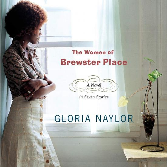 Women of Brewster Place Cover Image