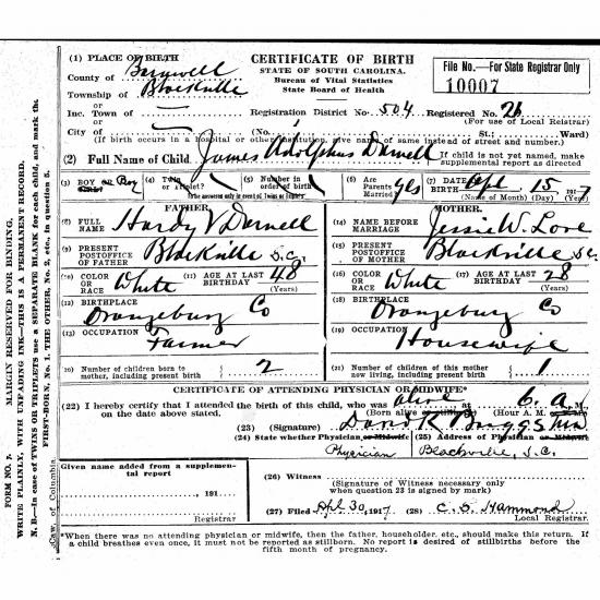 Image of historic birth certificate for James Adolphus Darnell with details about his birth written in by the doctor.